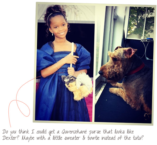Quvenzhane's dog purse at the 2013 Oscars.