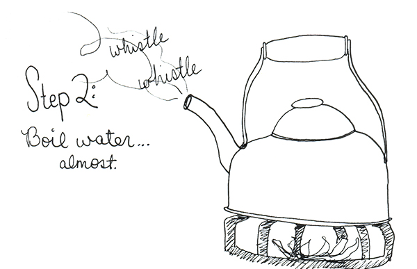 Morning Ritual Illustrated | Secrets of a Belle
