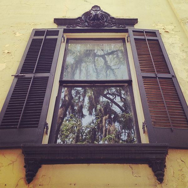 A window on Bull Street in Savannah, Georgia
