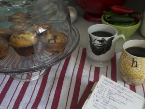 Blueberry Muffins   Hannah & Husband