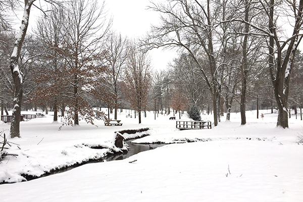 Snow in Springbrook Park | Hannah & Husband