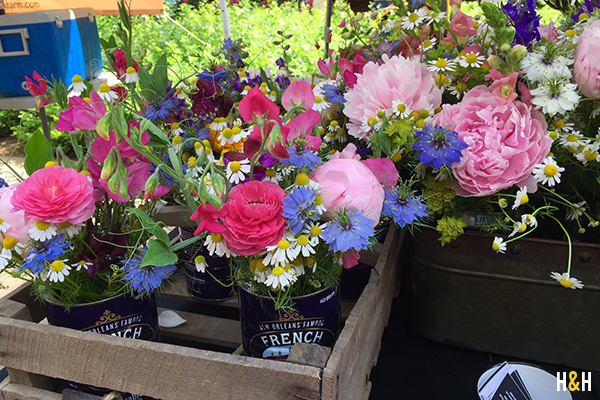 Flowers at the Market Square Farmers Market | Hannah & Husband