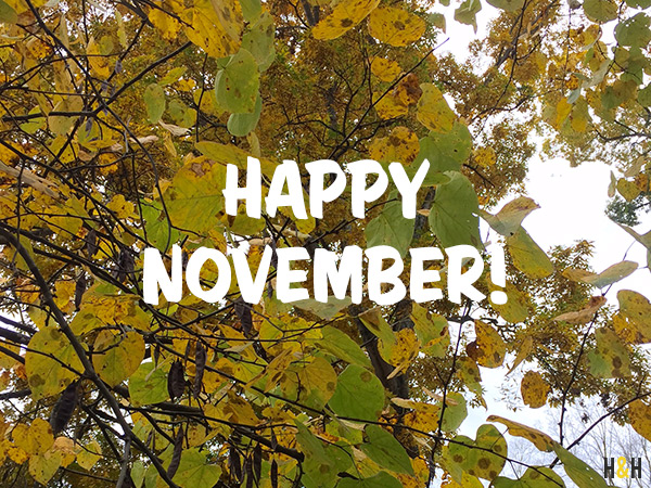 Happy November | Hannah & Husband